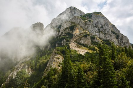 Photo pour Beau paysage montagneux le jour de l'été - image libre de droit