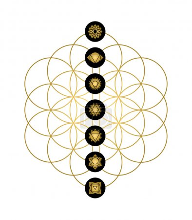 Modern yoga design chakra icons in gold color