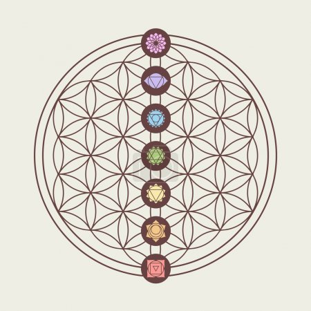 Illustration for Zen concept illustration, seven main chakra icons placed on flower of life sacred geometry design. EPS10 vector. - Royalty Free Image