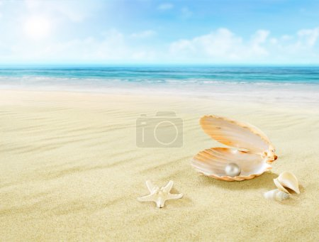 Pearl in seashell.