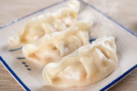 Popular Chinese Cuisine Dumplings