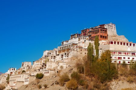 India Thikse Gompa with blue sky