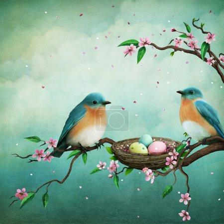 Photo pour Carte de voeux ou illustration pour Pâques avec des oiseaux bleus et des œufs dans le nid - image libre de droit
