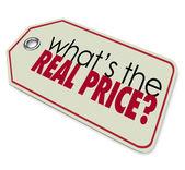 Co je skutečnou cenu nákladů investiční náklady