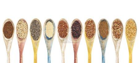 Photo pour Une collection de grains et de graines sans gluten sur des cuillères en bois isolées - kaniwa, sorgho, chia, amarante, quinoa rouge, quinoa noir, riz brun, teff, sarrasin, lin doré (de gauche à droite ) - image libre de droit