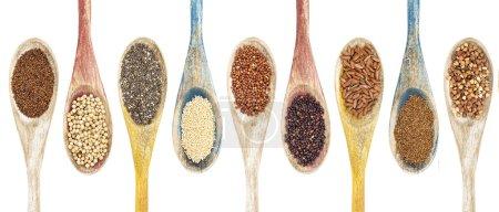 Photo pour Une collection de grains et de graines sans gluten sur des cuillères en bois isolées - kaniwa, sorgho, chia, amarante, quinoa rouge, quinoa noir, riz brun, teff, sarrasin (de gauche à droite ) - image libre de droit