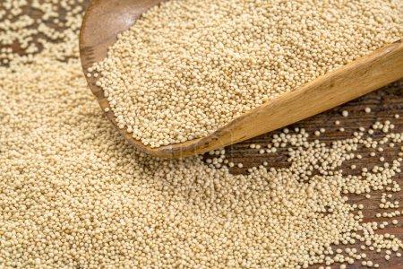 Photo pour Grain amarnath sans gluten sur une cuillère en bois rustique - image libre de droit