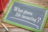 What gives life meaning question