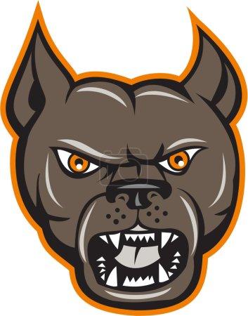 Pitbull Dog Mongrel Head Angry