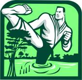 Illustration of a marital arts fighter kicking cypress tree on swamp or bayou set inside shield shape done in retro style