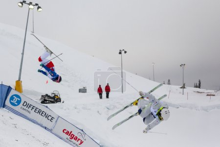 FIS Freestyle Ski World Cup - 2015   Calgary