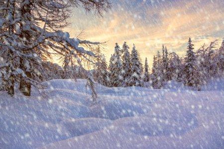 Photo pour Paysage d'hiver - image libre de droit
