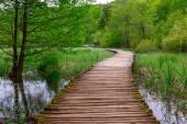 Boardwalk in the park Plitvice lakes