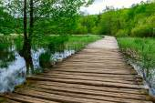 Boardwalk in the park Plitvice lakes