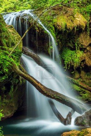 Cascada La Vaioaga in Cheile Nerei national park