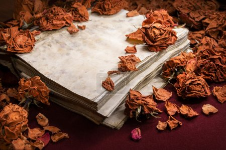 Background in retro style. Dry roses scattered on old book