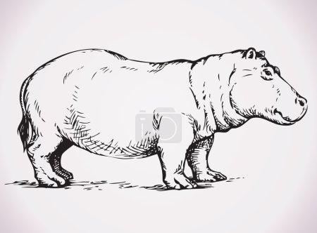 Big hippopotamus. Vector drawing