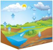 Water Cycle Vector diagram