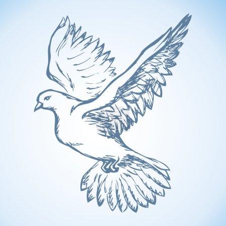 Vector illustration Flying dove