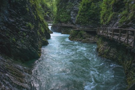 Flowing river. Slovenia