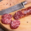 Salami and knife on a cutting board, top view...