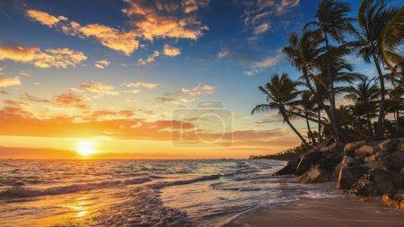 Photo for Landscape of paradise tropical island beach, sunrise shot - Royalty Free Image