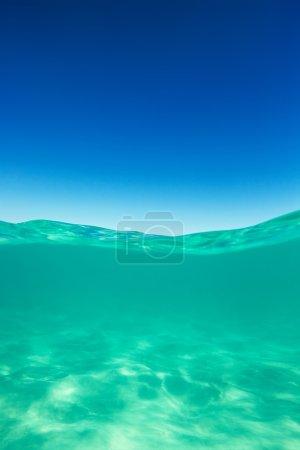 Photo pour Mer claire de ligne d'eau des Caraïbes sous l'eau et au-dessus avec l'horizon bleu de ciel - image libre de droit