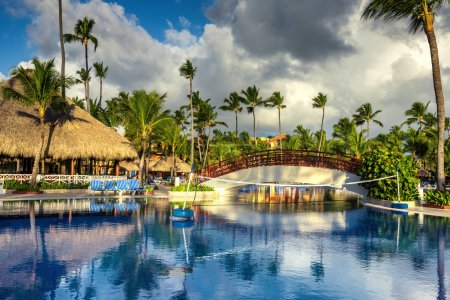 Photo for Tropical swimming pool and palm trees in luxury resort - Royalty Free Image