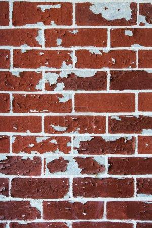 Foto de Textura de pared de ladrillo como fondo - Imagen libre de derechos