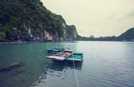 Amazing Halong Bay by day, Vietnam...