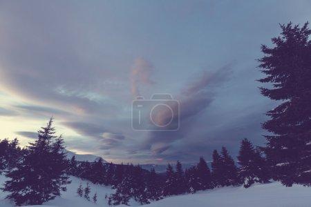 Beautiful Carpathian mountains