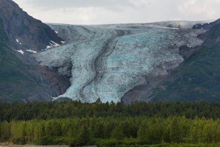 picturesque Exit glacier