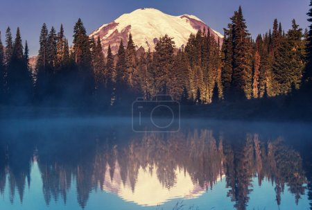Photo for Mount Rainier national park, Washington - Royalty Free Image