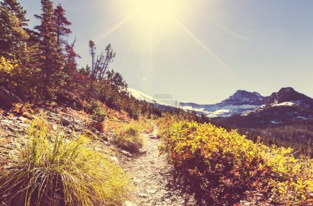Photo for Glacier National Park, Montana. - Royalty Free Image