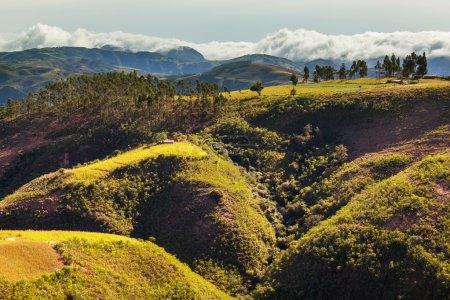 Fields in Bolivia