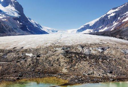 Athabasca glacier in park