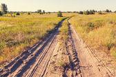 Farm road in meadow