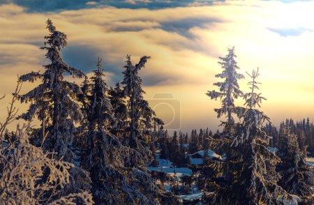 snowy resort in Winter