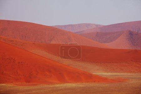 Sand dunes in Namib desert...