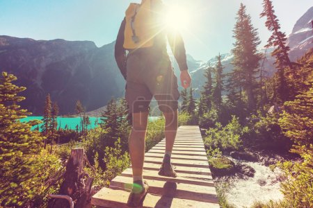 Photo for Hiker man walking in the mountains in Canada - Royalty Free Image