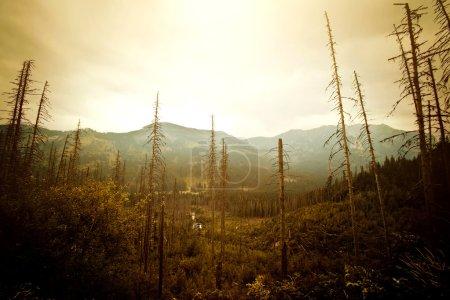 Photo pour Des montagnes. Paysage naturel abstrait fantastique. Nature image conceptuelle . - image libre de droit