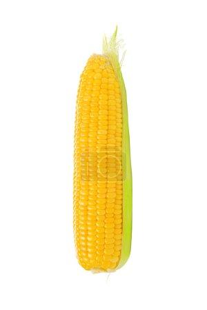 Maiskolben auf weißem Hintergrund