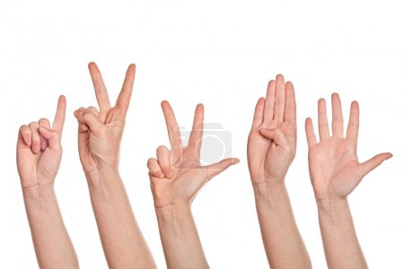 Female hands counting from one to five