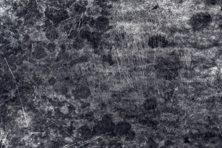 Photo for Grunge Monochromatic Texture, old wooden plate with stains and scratches as natural pattern background. - Royalty Free Image