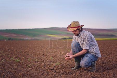 Male Farmer Examines Soil Quality on Fertile Agric...
