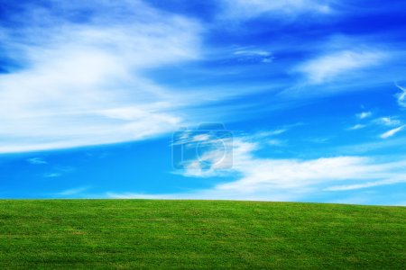 Photo for Grassland and Sky, Horizon over Field, Open Empty Green Grass Coutryside Meadow and Blue Sky with Clouds, Beautiful Spring Season Natural Scene - Royalty Free Image