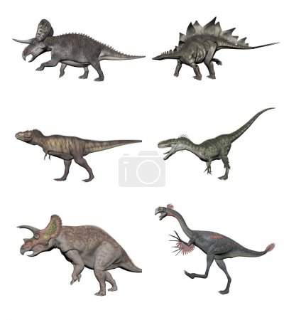 Six various dinosaurs on white bottom...