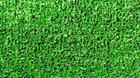 Photo for Background of fresh green grass - Royalty Free Image