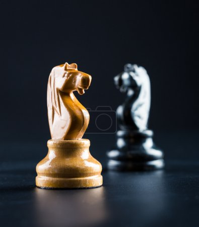 White and black chess knights