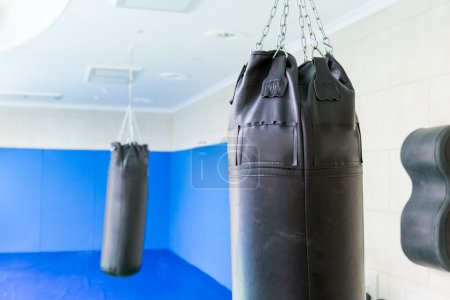 Black punching bags in the gym